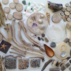 Large Seashore Box Contents